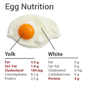 are eggs low carb