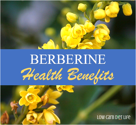 Berberine Health Benefits